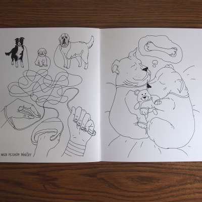 Coloring Book for The Animal Shelter