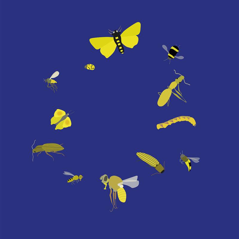 My Europe
